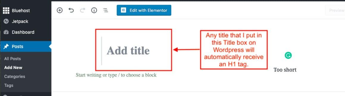 WordPress UI showing H1 field