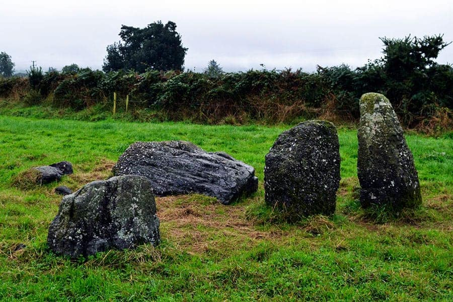 Knockboy Stone Row, the prostate stone is possibly an outlier stone - The Irish Place
