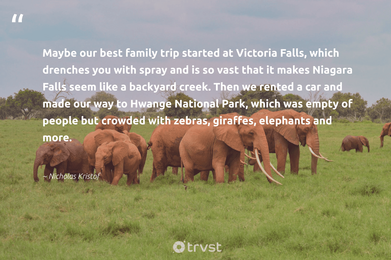 """""""Maybe our best family trip started at Victoria Falls, which drenches you with spray and is so vast that it makes Niagara Falls seem like a backyard creek. Then we rented a car and made our way to Hwange National Park, which was empty of people but crowded with zebras, giraffes, elephants and more.""""  - Nicholas Kristof #trvst #quotes #family #elephants #endangered #bethechange #endangeredspecies #dosomething #wildanimals #collectiveaction #wildgeography #beinspired"""
