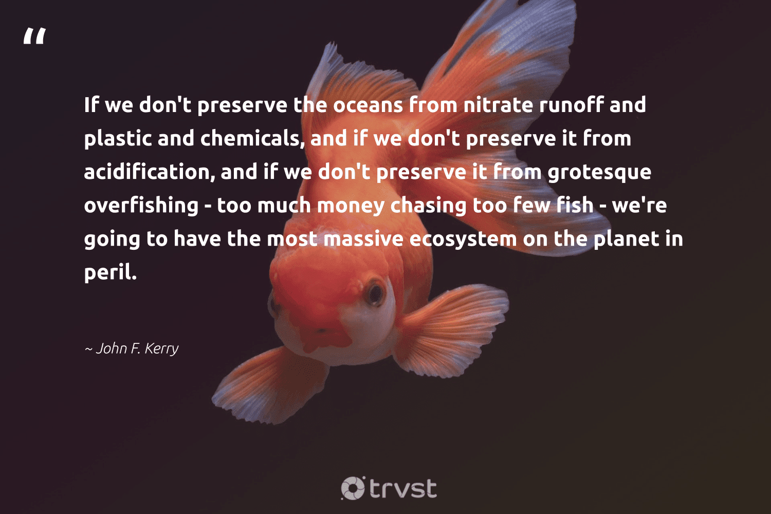 """""""If we don't preserve the oceans from nitrate runoff and plastic and chemicals, and if we don't preserve it from acidification, and if we don't preserve it from grotesque overfishing - too much money chasing too few fish - we're going to have the most massive ecosystem on the planet in peril.""""  - John F. Kerry #trvst #quotes #plastic #planet #fish #oceans #ourplasticproblem #healthyocean #wasteless #beinspired #microplastics #oceanconservation"""