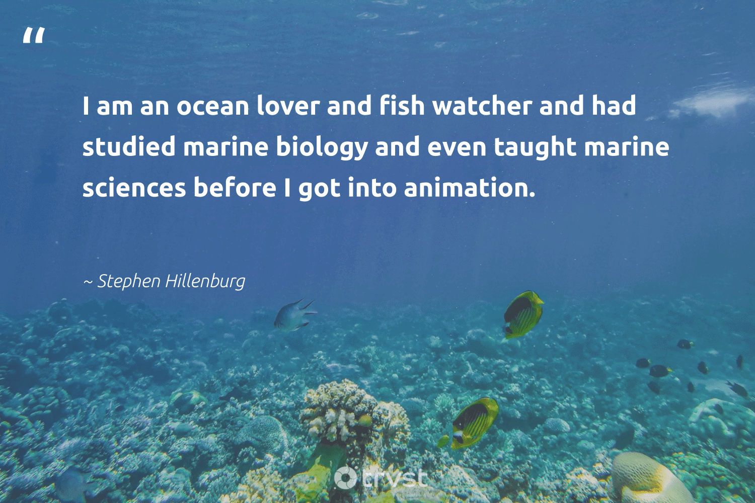 """""""I am an ocean lover and fish watcher and had studied marine biology and even taught marine sciences before I got into animation.""""  - Stephen Hillenburg #trvst #quotes #ocean #biology #fish #marine #shellfish #oceanpollution #conservation #nature #changetheworld #travel"""