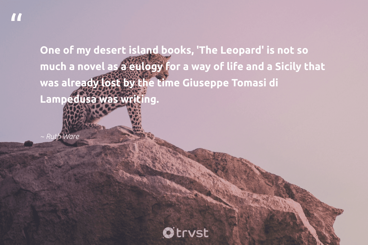 """""""One of my desert island books, 'The Leopard' is not so much a novel as a eulogy for a way of life and a Sicily that was already lost by the time Giuseppe Tomasi di Lampedusa was writing.""""  - Ruth Ware #trvst #quotes #leopard #life #wildlifeprotection #dosomething #nature #planetearthfirst #big5 #thinkgreen #conservation #beinspired"""