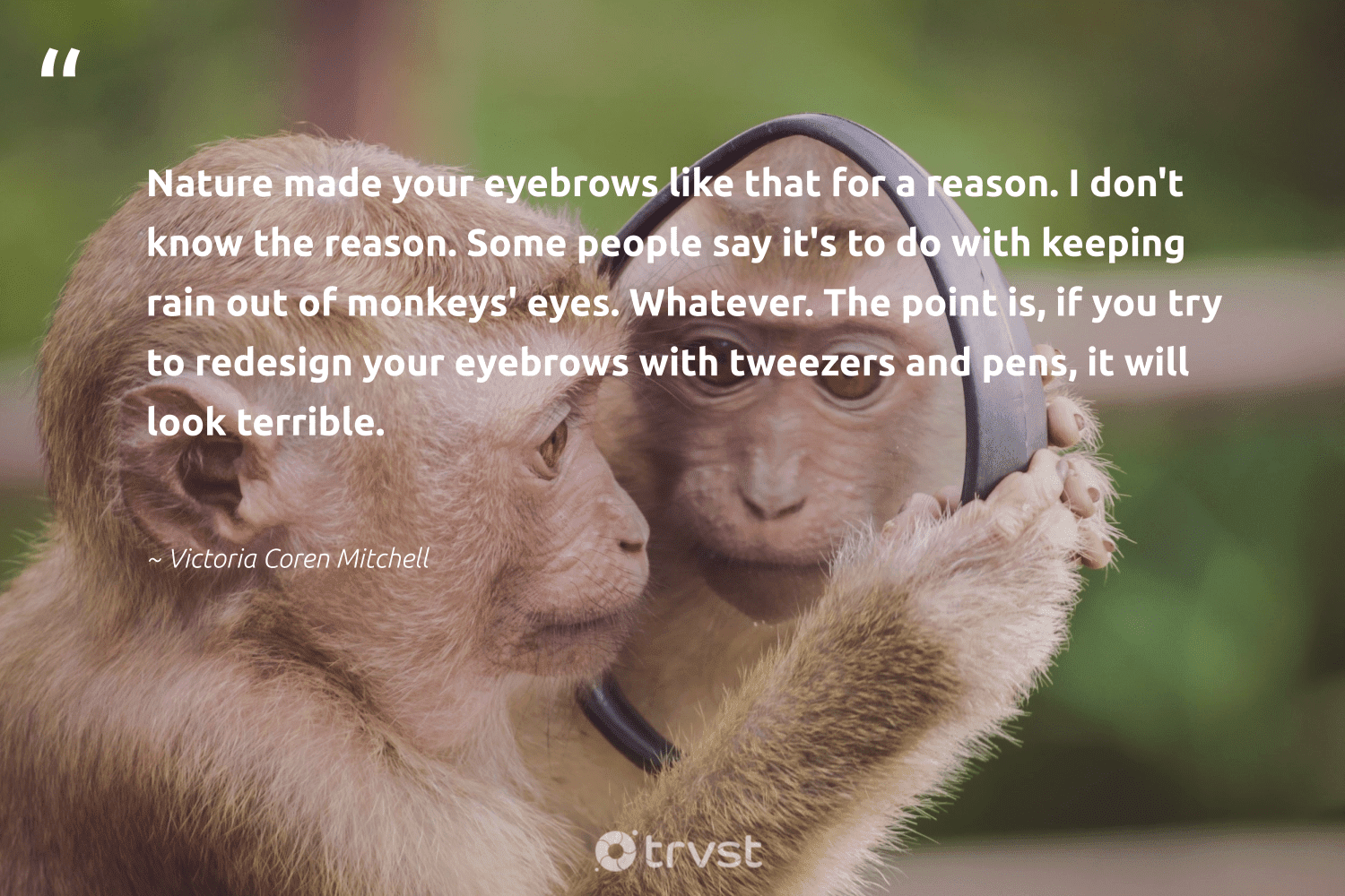 """Nature made your eyebrows like that for a reason. I don't know the reason. Some people say it's to do with keeping rain out of monkeys' eyes. Whatever. The point is, if you try to redesign your eyebrows with tweezers and pens, it will look terrible.""  - Victoria Coren Mitchell #trvst #quotes #nature #monkeys #earth #monkey #wildernessnation #dosomething #conservation #perfectnature #sustainable #changetheworld"