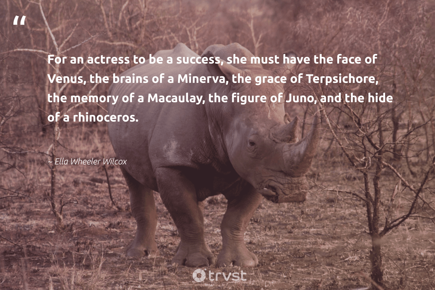 """""""For an actress to be a success, she must have the face of Venus, the brains of a Minerva, the grace of Terpsichore, the memory of a Macaulay, the figure of Juno, and the hide of a rhinoceros.""""  - Ella Wheeler Wilcox #trvst #quotes #success #rhinoceros #motivational #protectnature #futureofwork #thinkgreen #goals #biodiversity #begreat #collectiveaction"""