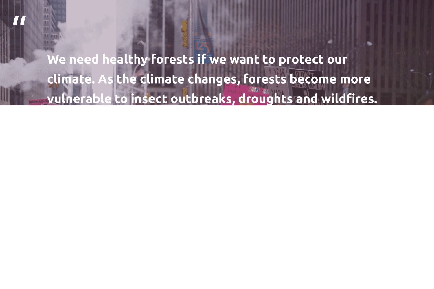 """""""We need healthy forests if we want to protect our climate. As the climate changes, forests become more vulnerable to insect outbreaks, droughts and wildfires. Simultaneously, when our forests are destroyed, their carbon is released back into the atmosphere, further impacting climate change. It's a horrifying one-two punch.""""  - Chris Noth #trvst #quotes #climatechange #carbon #insect #climate #healthy #co2 #globalwarming #climateaction #actonclimate #collectiveaction"""