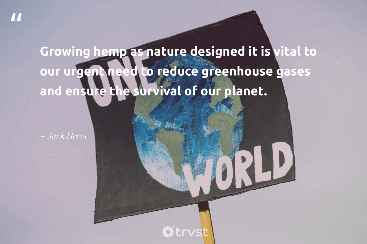 """""""Growing hemp as nature designed it is vital to our urgent need to reduce greenhouse gases and ensure the survival of our planet.""""  - Jack Herer #trvst #quotes #reduce #nature #planet #mothernature #recycled #climatechangeisreal #eco #bethechange #environment #upcycle"""