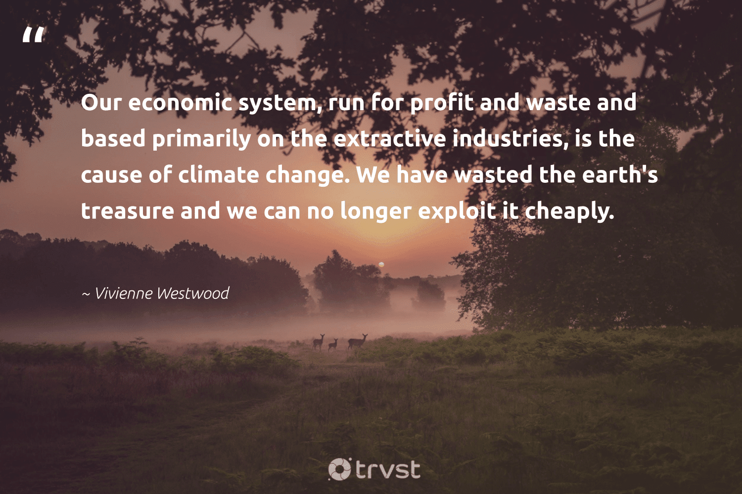 """""""Our economic system, run for profit and waste and based primarily on the extractive industries, is the cause of climate change. We have wasted the earth's treasure and we can no longer exploit it cheaply.""""  - Vivienne Westwood #trvst #quotes #climatechange #waste #climate #cause #climateaction #cop21 #climatechangeisreal #ecoconscious #bethechange #carbonemissions"""