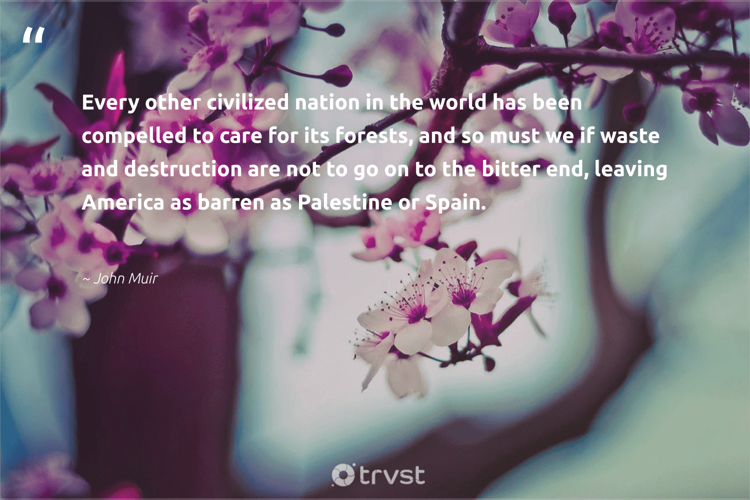 """Every other civilized nation in the world has been compelled to care for its forests, and so must we if waste and destruction are not to go on to the bitter end, leaving America as barren as Palestine or Spain.""  - John Muir #trvst #quotes #waste #climatechange #impact #wildlifeplanet #collectiveaction #sustainable #dotherightthing #sustainableliving #changetheworld #noplanetb"