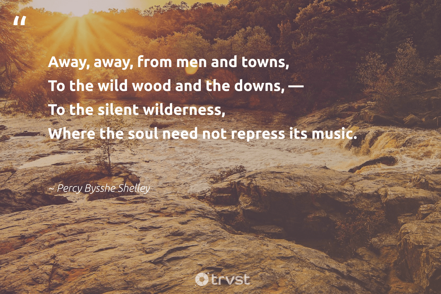 """Away, away, from men and towns, To the wild wood and the downs, — To the silent wilderness, Where the soul need not repress its music.""  - Percy Bysshe Shelley #trvst #quotes #deforestation #wood #trees #gogreen #naturelovers #planetearthfirst #treeplanting #eco #sustainability #bethechange"