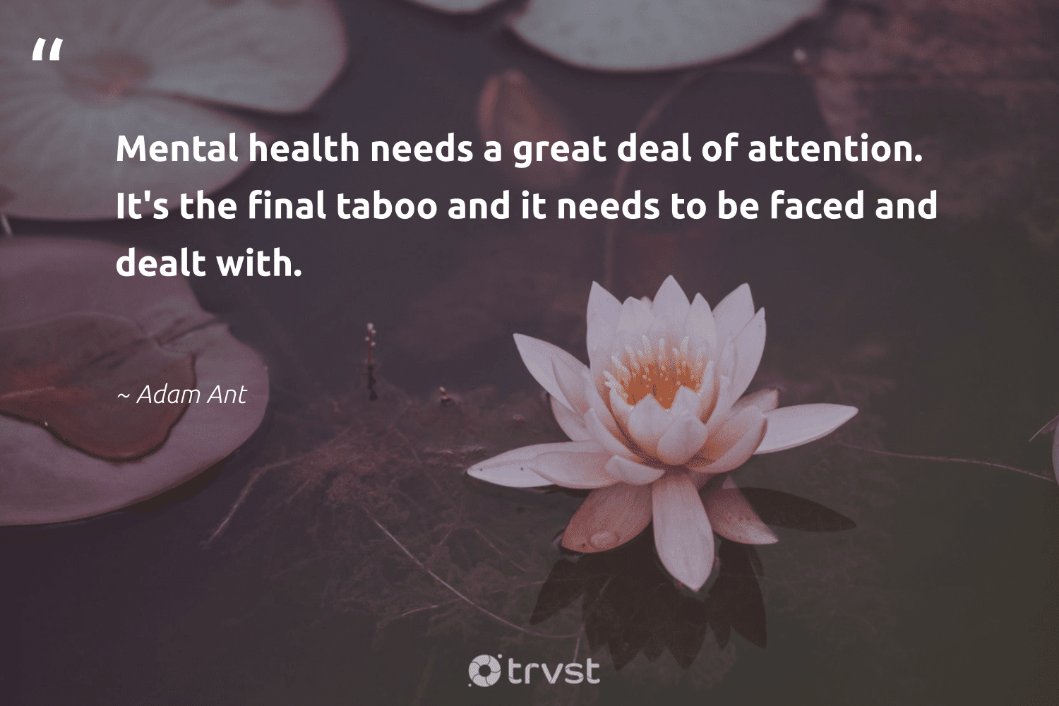 """Mental health needs a great deal of attention. It's the final taboo and it needs to be faced and dealt with.""  - Adam Ant #trvst #quotes #mentalhealth #health #depression #changemakers #nevergiveup #beinspired #stampoutthestigma #togetherwecan #mindset #bethechange"