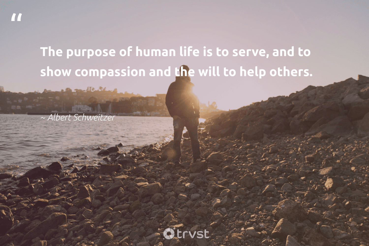 """""""The purpose of human life is to serve, and to show compassion and the will to help others.""""  - Albert Schweitzer #trvst #quotes #purpose #findingpupose #mindset #nevergiveup #changetheworld #purposedriven #changemakers #togetherwecan #ecoconscious #findpurpose"""