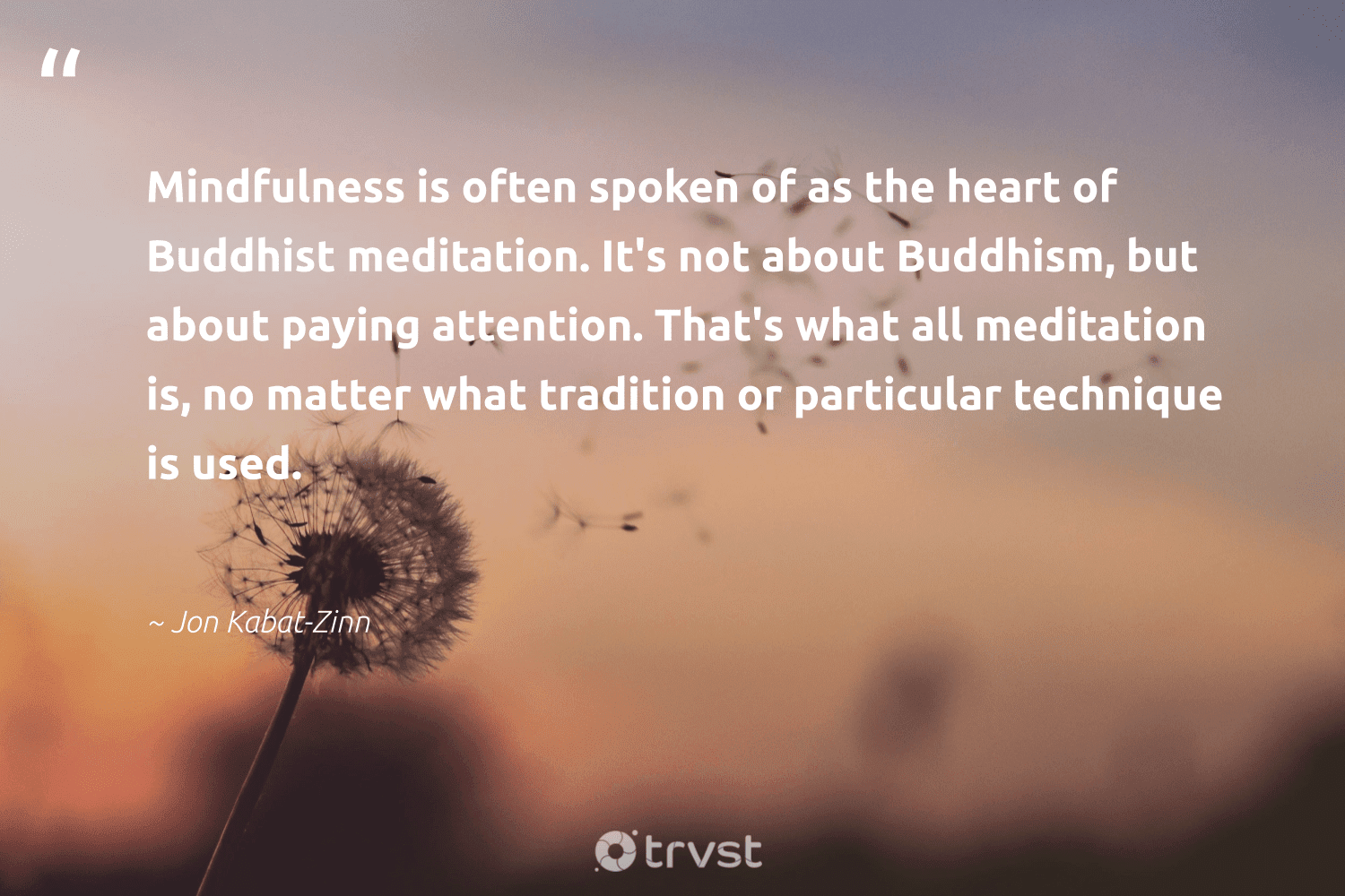 """""""Mindfulness is often spoken of as the heart of Buddhist meditation. It's not about Buddhism, but about paying attention. That's what all meditation is, no matter what tradition or particular technique is used.""""  - Jon Kabat-Zinn #trvst #quotes #mindfulness #meditation #mindful #motivation #mentalheatlh #begreat #socialchange #goals #positivity #wellness"""