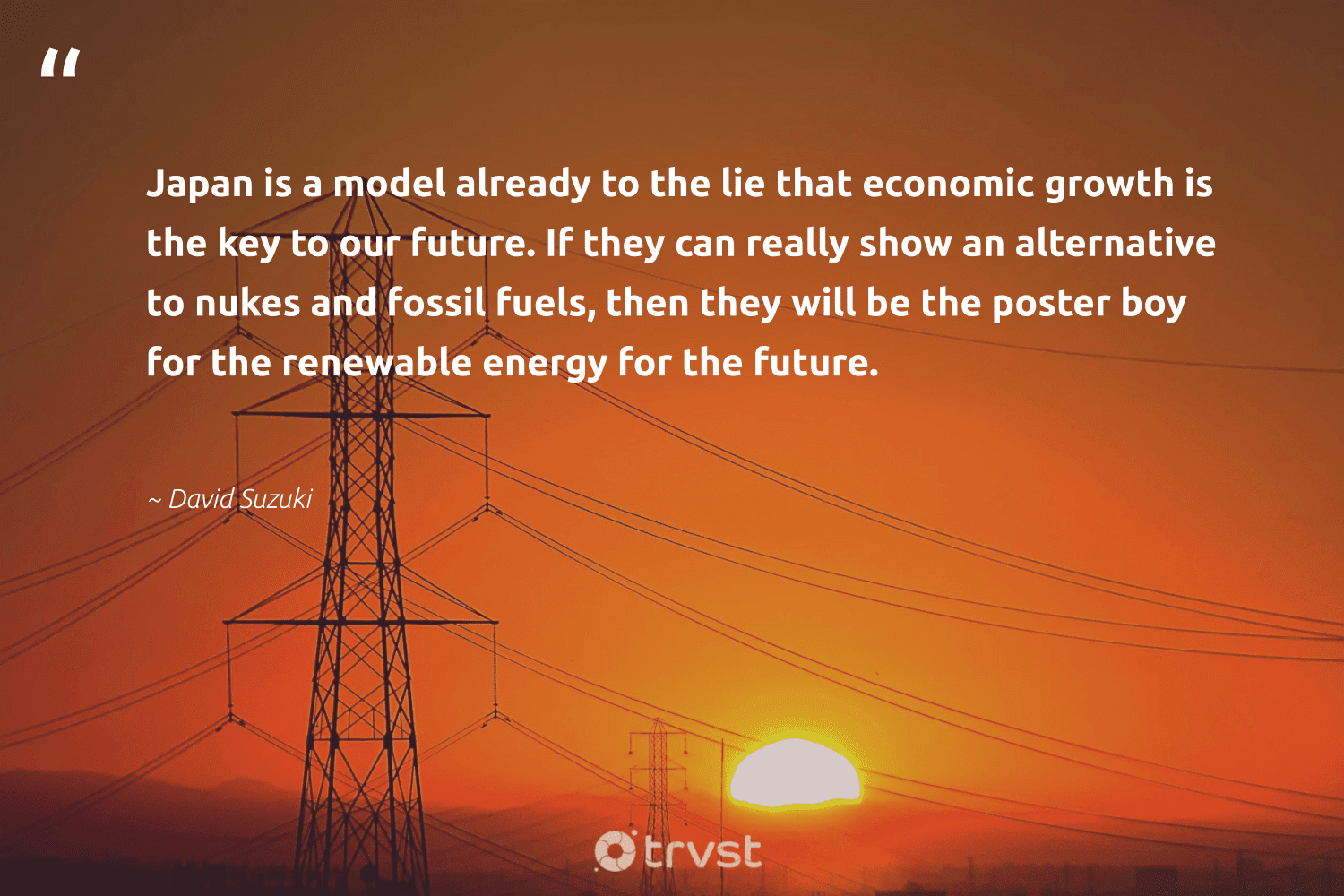 """""""Japan is a model already to the lie that economic growth is the key to our future. If they can really show an alternative to nukes and fossil fuels, then they will be the poster boy for the renewable energy for the future.""""  - David Suzuki #trvst #quotes #renewableenergy #energy #renewable #fossilfuels #fossil #affordable #switchfuelenergy #gogreen #greenlife #dosomething"""