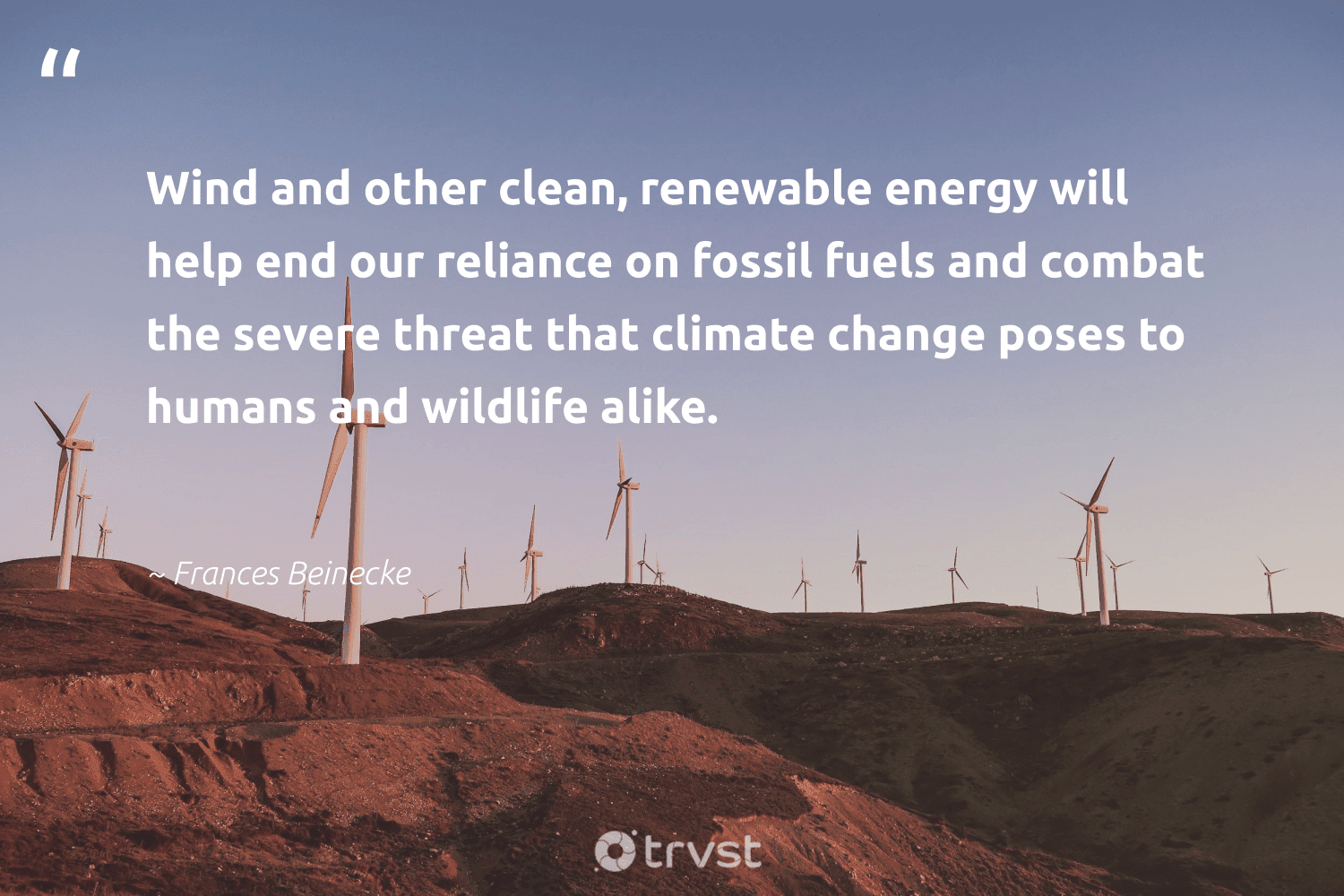 """""""Wind and other clean, renewable energy will help end our reliance on fossil fuels and combat the severe threat that climate change poses to humans and wildlife alike.""""  - Frances Beinecke #trvst #quotes #renewableenergy #climatechange #energy #renewable #fossilfuels #fossil #wildlife #climate #switchfuelenergy #cleanenergy"""