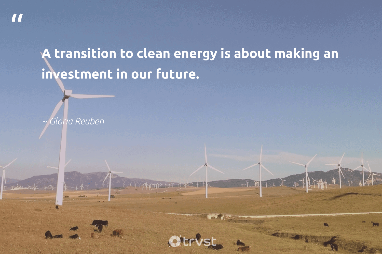 """""""A transition to clean energy is about making an investment in our future.""""  - Gloria Reuben #trvst #quotes #renewableenergy #energy #cleanenergy #renewable #ecofriendly #environment #dotherightthing #renewables #green #carbon"""