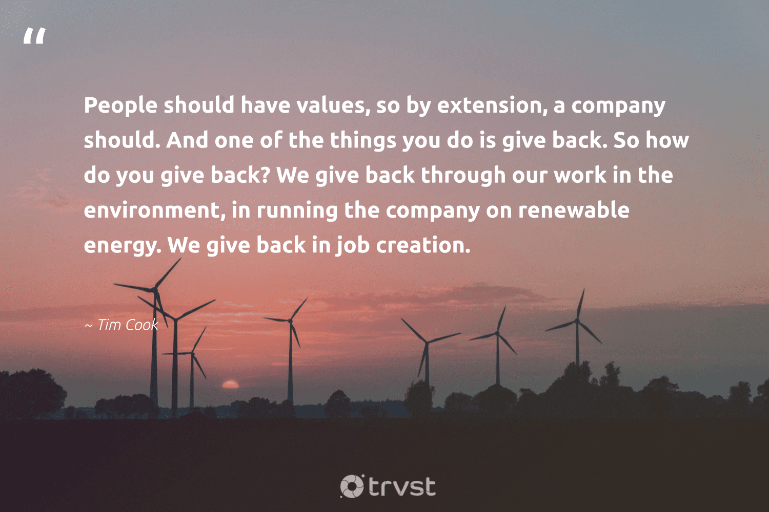 """""""People should have values, so by extension, a company should. And one of the things you do is give back. So how do you give back? We give back through our work in the environment, in running the company on renewable energy. We give back in job creation.""""  - Tim Cook #trvst #quotes #renewableenergy #environment #energy #renewable #giveback #switchfuelenergy #greenenergy #planetearth #greenlife #dosomething"""