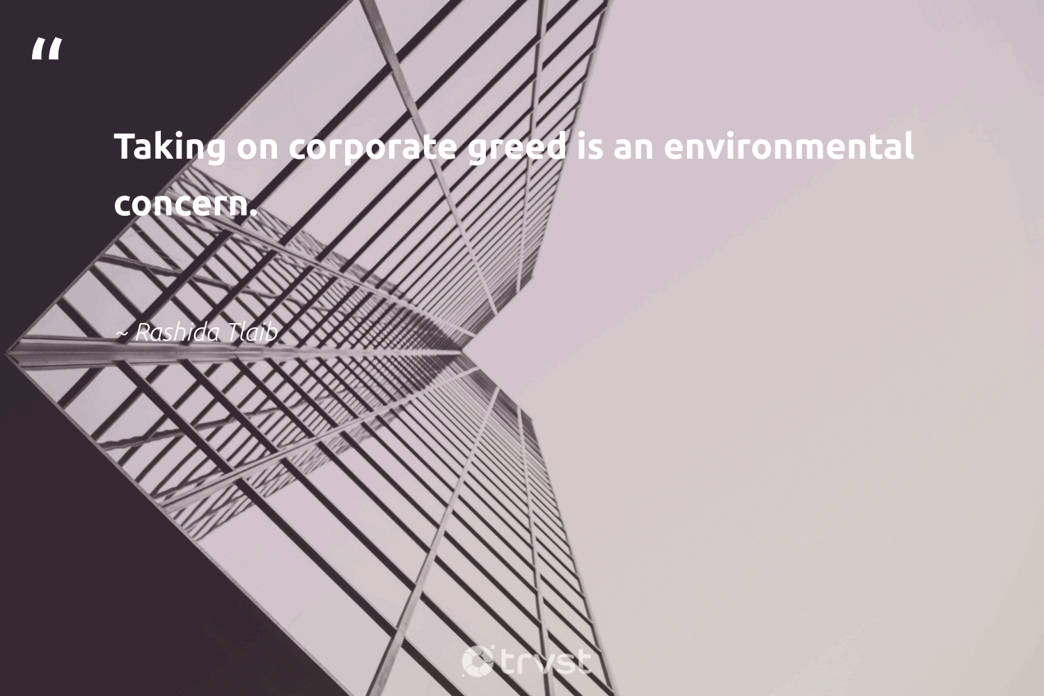 """""""Taking on corporate greed is an environmental concern.""""  - Rashida Tlaib #trvst #quotes #environmental #weareallone #bethechange #ethicalbusiness #thinkgreen #sharedresponsibility #collectiveaction #dogood #dotherightthing #ecoconscious"""