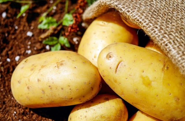 potatoes - a staple food in Irish homes