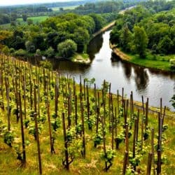 Czech Republic's Melnik – A Place For Royalty, Heartbreak and Wine