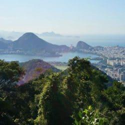Rio de Janeiro Pico da Tijuca Hike
