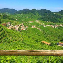 An Insider's Tour of Italy's Veneto and Friuli Venezia Giulia Regions