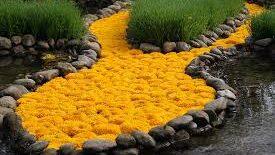 Jardin Extraordinaire tuin