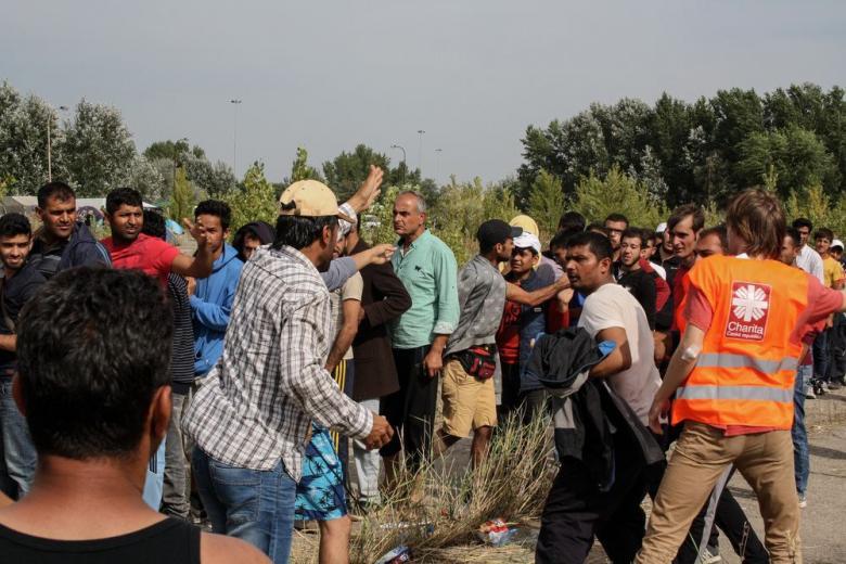 Действительно ли мигранты опаснее немцев? фото 1