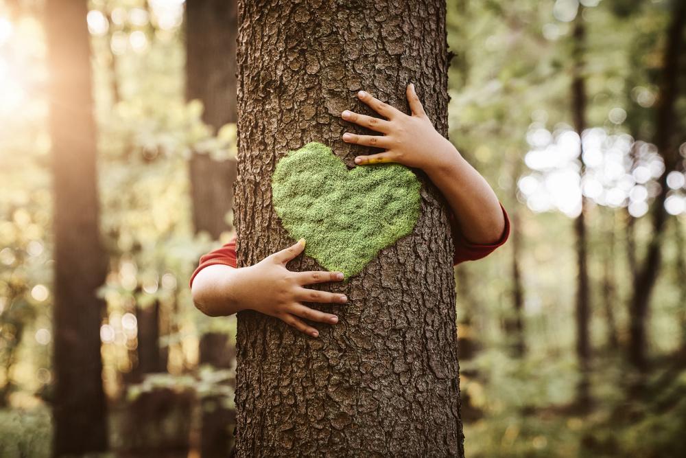 WIHEDÜ - Umwelt Liebe