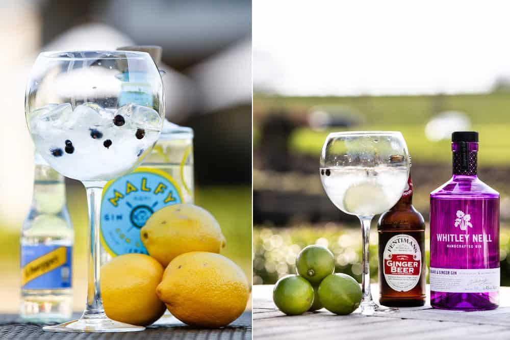 malfy gin & tonic photo