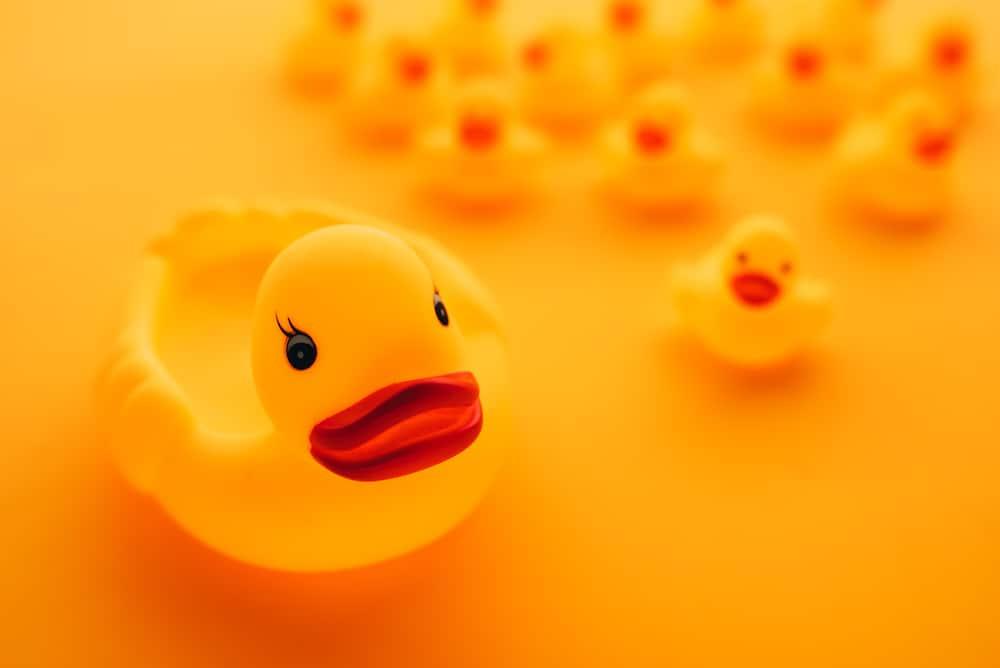 rubber duck debugging data