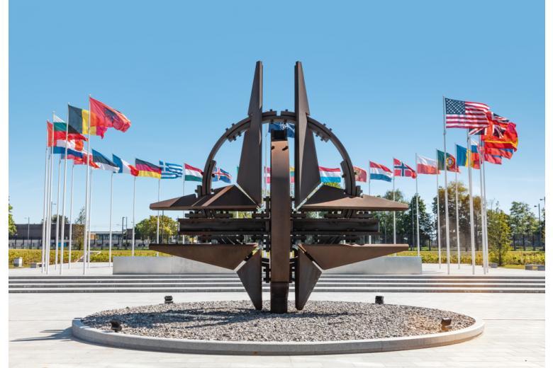 Скульптура с символом НАТО фото