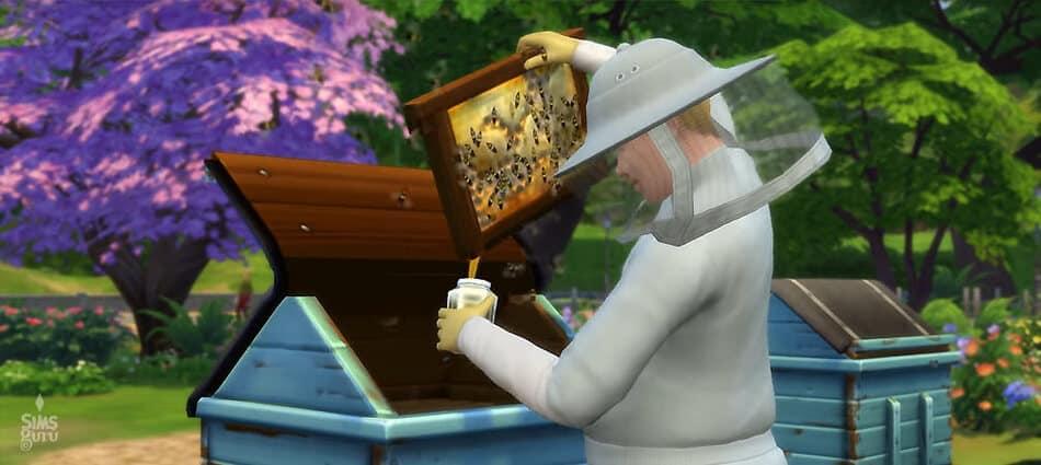 Cultivando abejas en Los Sims 4 Y Las Cuatro Estaciones