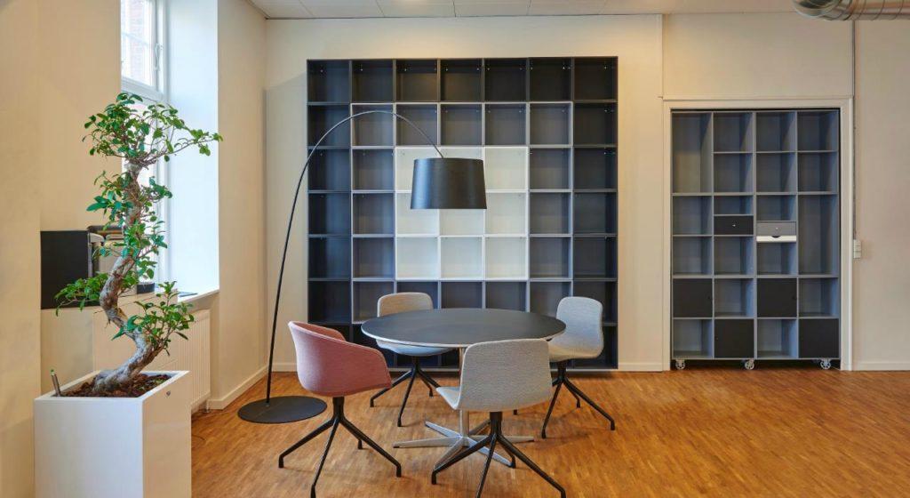 best office decoration plant