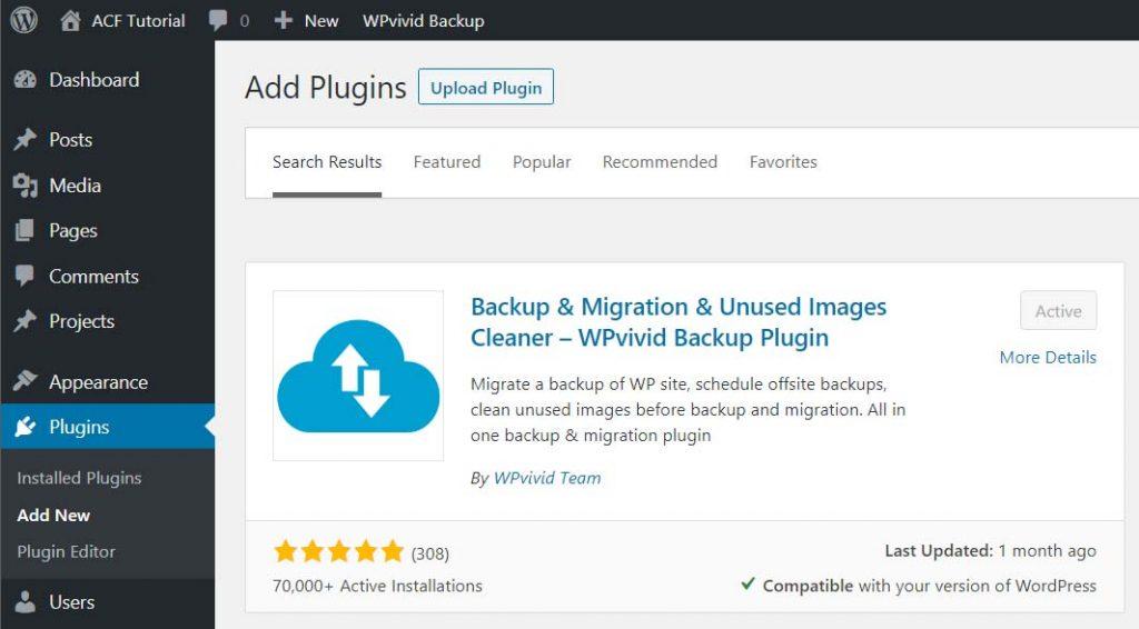 WordPress Website Migration