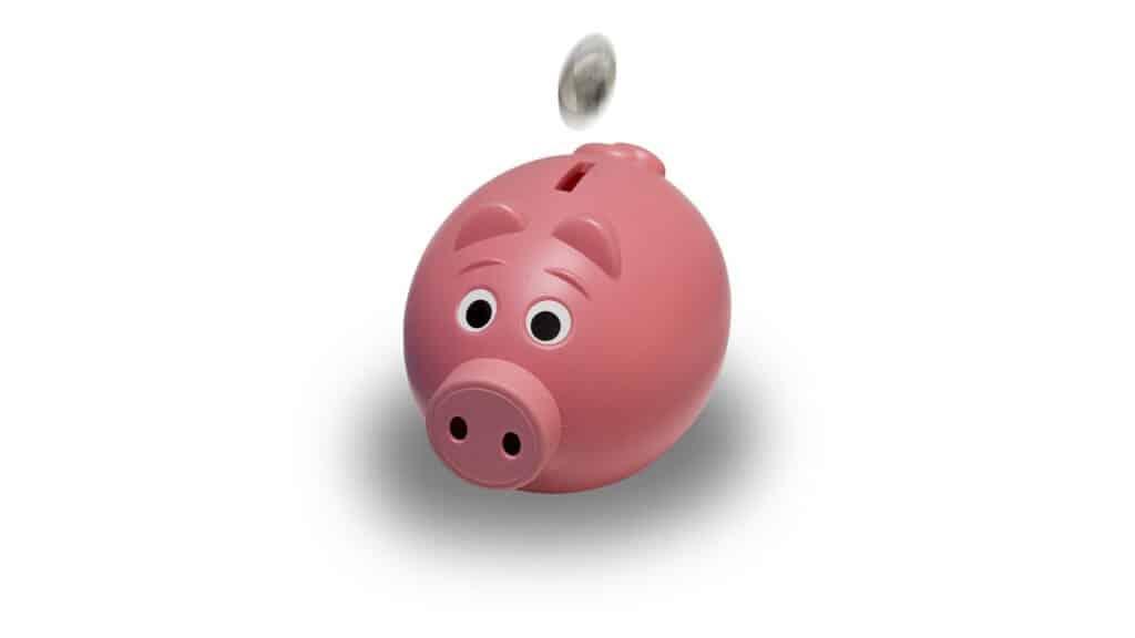 Spaarvarken waar geld in wordt gestopt