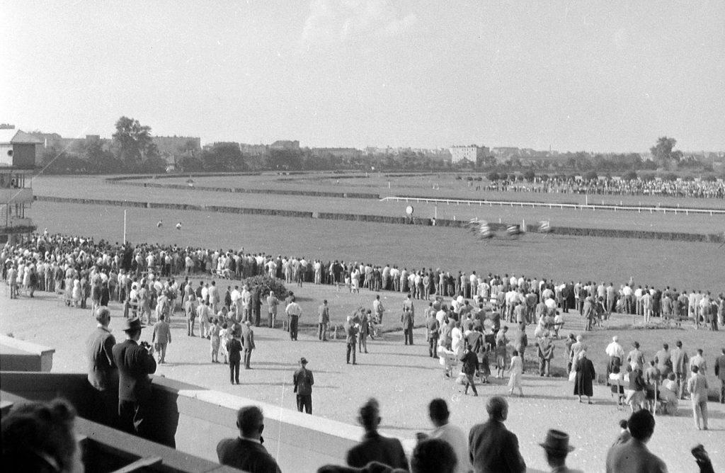 Kincsem Park, horse, racing, venue