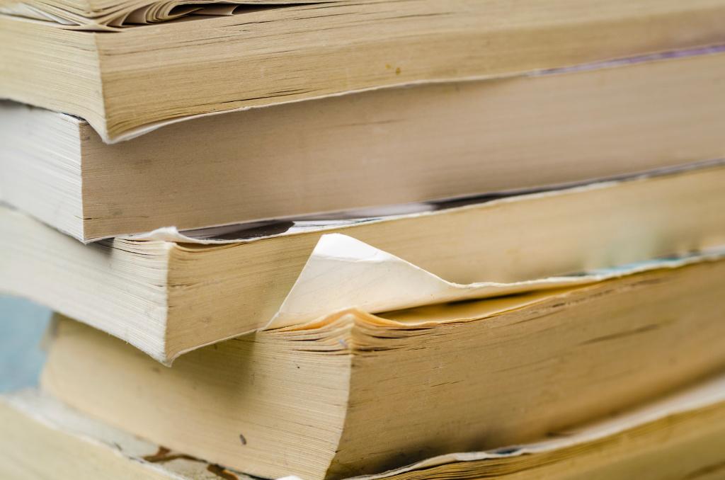 5 Essential Books for Every Artist's Bookshelf – ARTnews.com