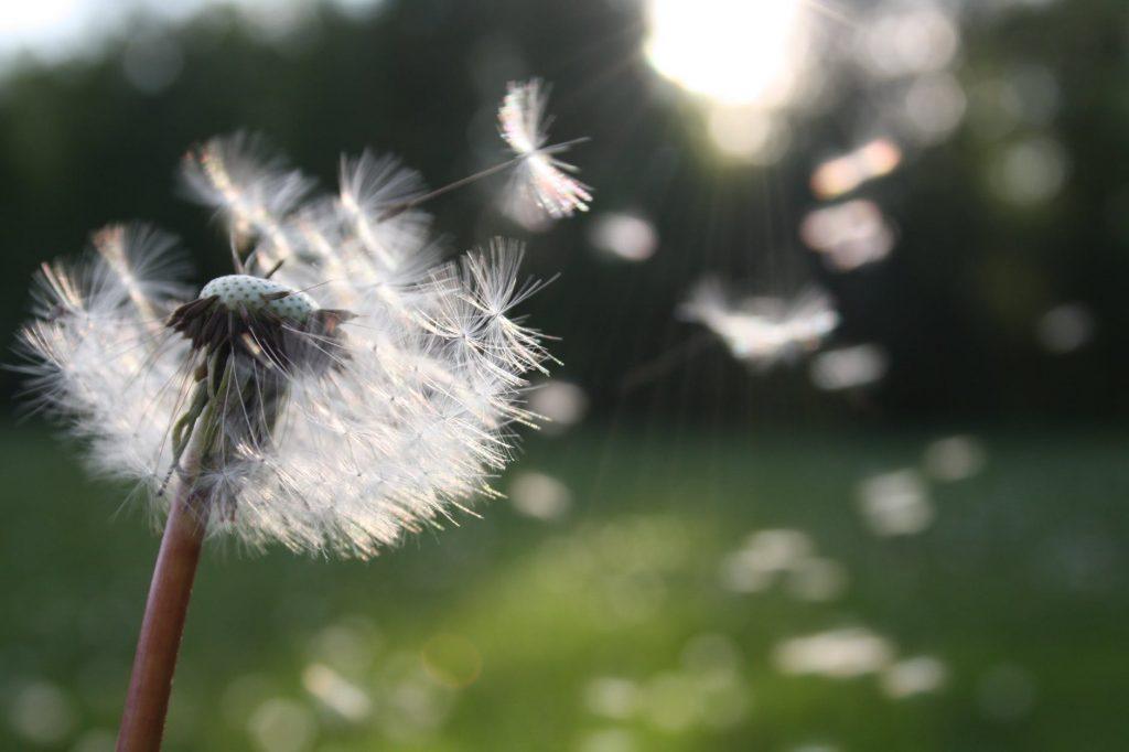 A bőség és a saját negatív tapasztalataid