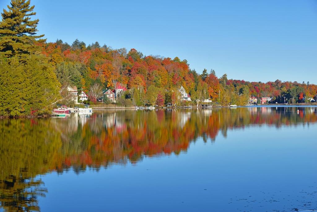 From Georgia to Maine, the east coast has incredible fall foliage to enjoy.