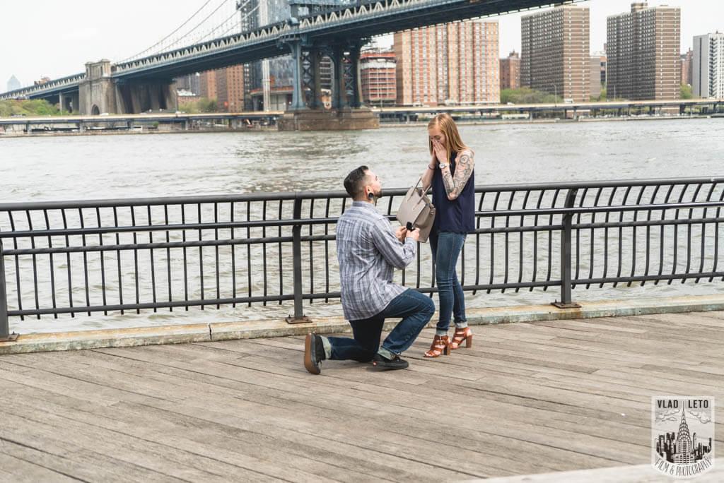 Photo 2 Dumbo Marriage Proposal. | VladLeto