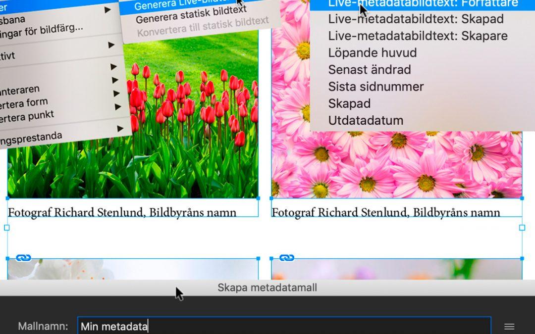 Automatiska bildtexter i InDesign