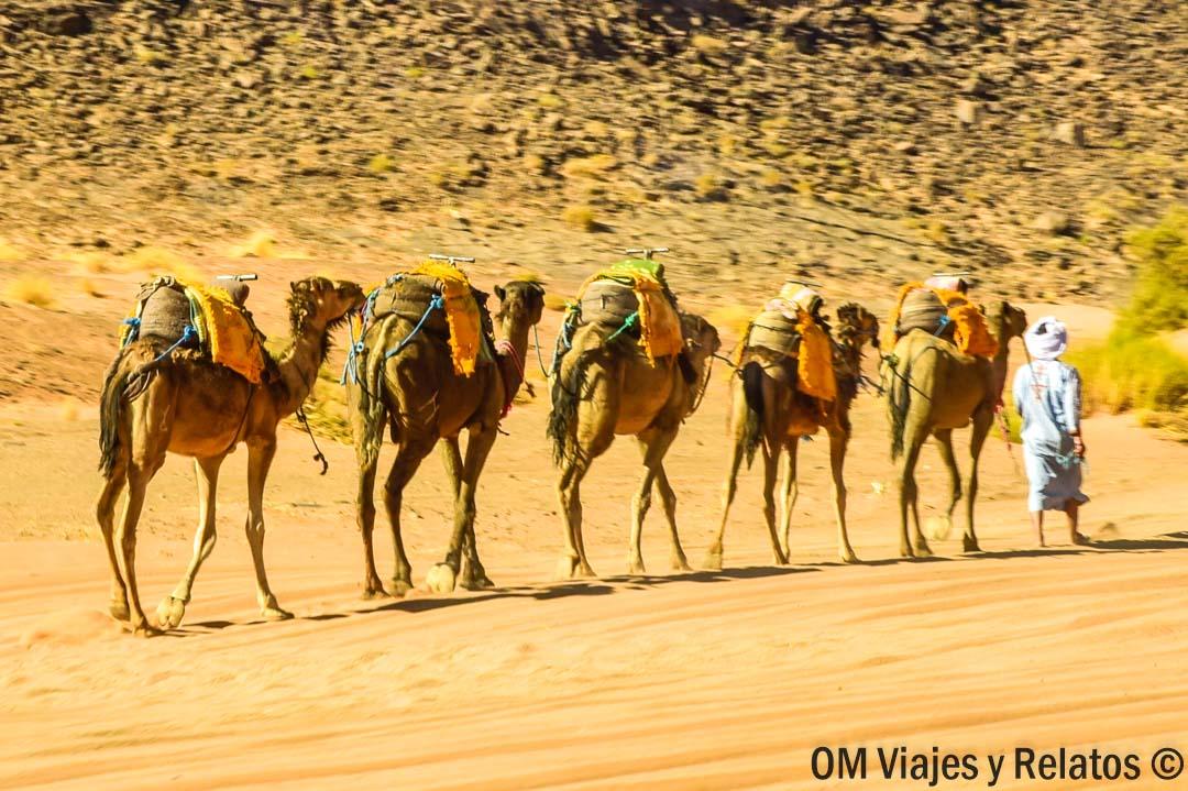 desierto-del-Sahara-Marruecos