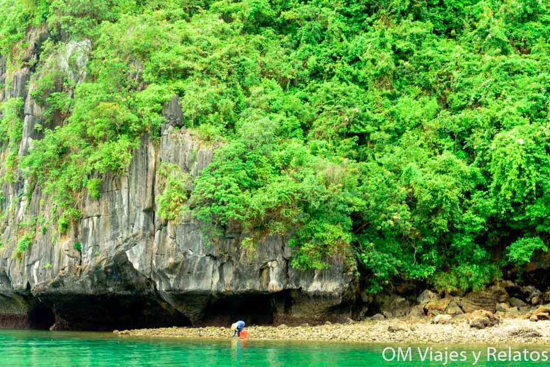 bahía-de-halong-pescadores