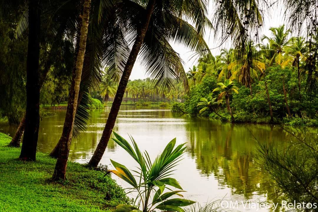 Backwaters-India