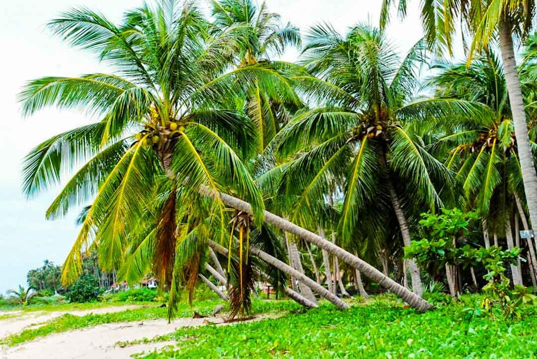 Playas-Tailandia