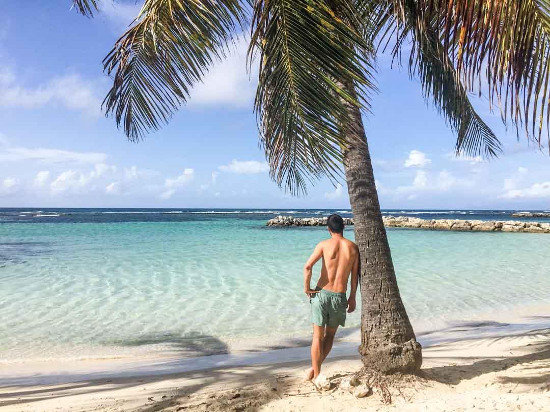 Islas-para-viajar-Guadalupe