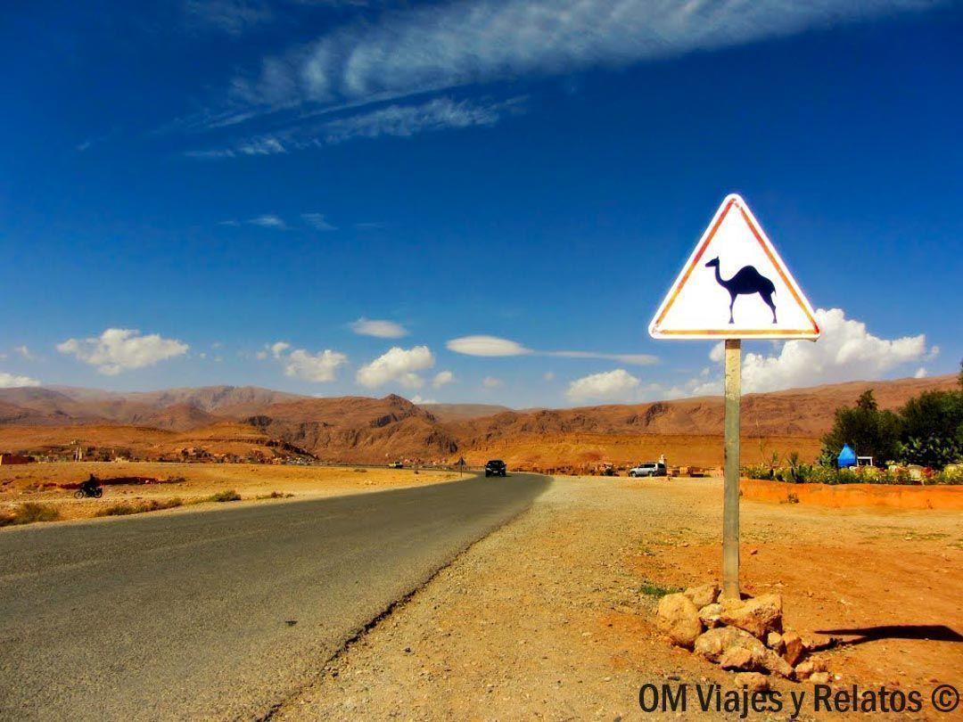 Alquiler-coche-en-Marruecos-Policía