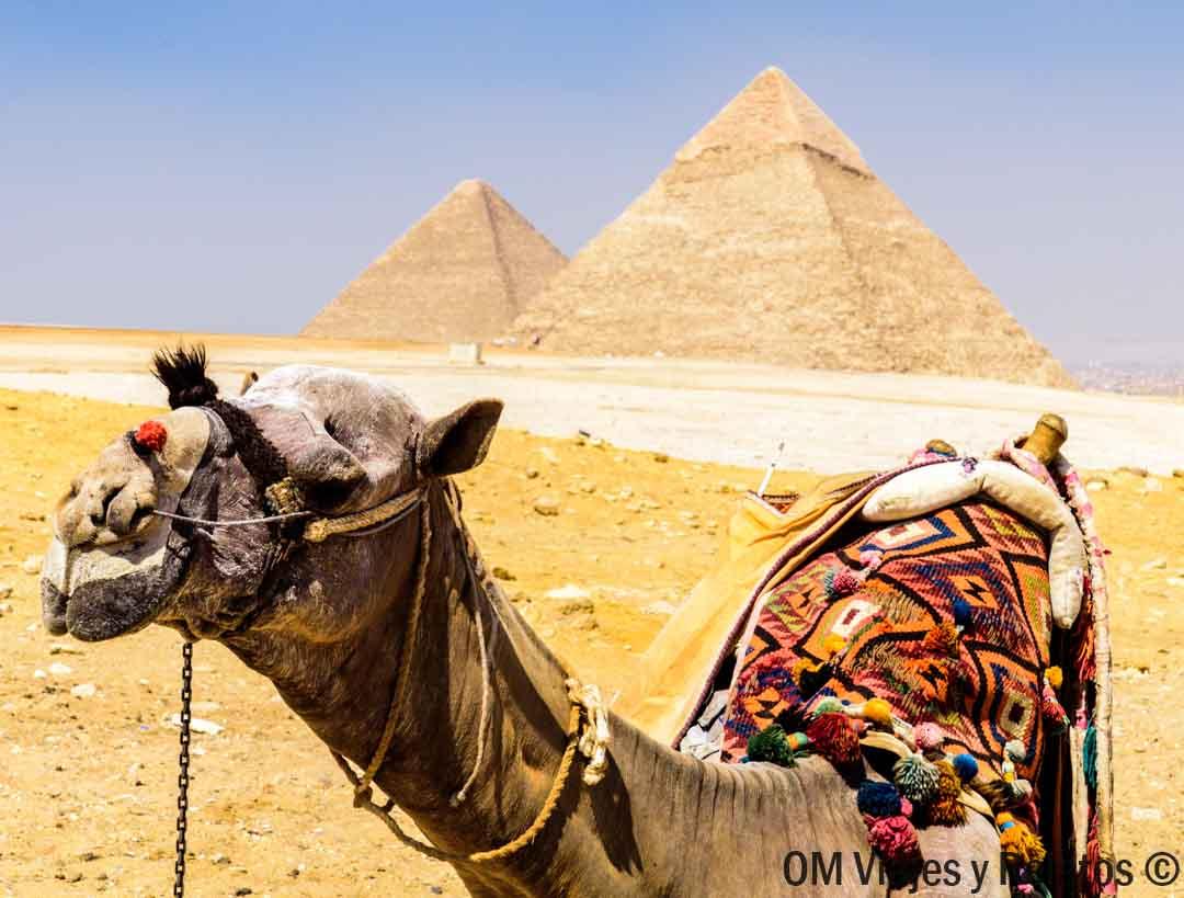 horarios-pirámides-Giza