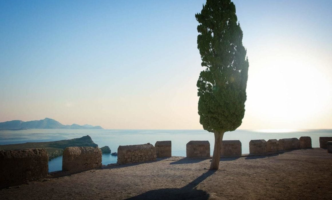 After-image-of-photo-retouching-of-tree-lyndos-greece