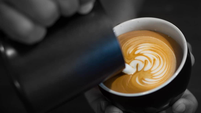 Schwattes Gold Café Suche